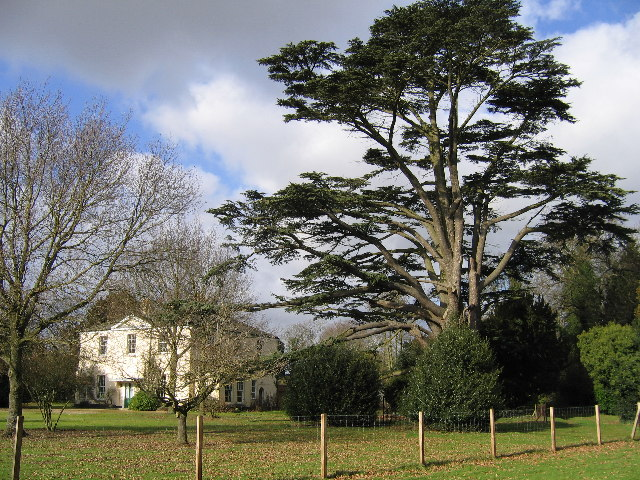 Rectory Meadow, Bramerton