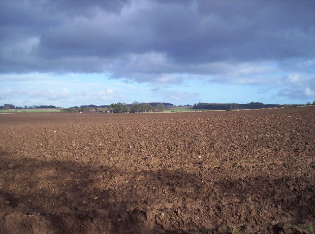 Ploughed Field and Willanyards