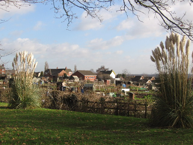 Garden allotments, Groby Road