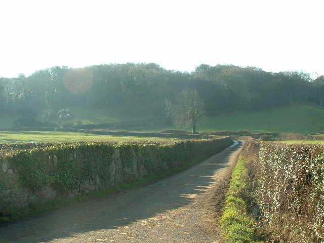 Lane near Glanwydden
