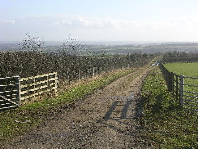 Long Edge, between Burnhope and Sacriston