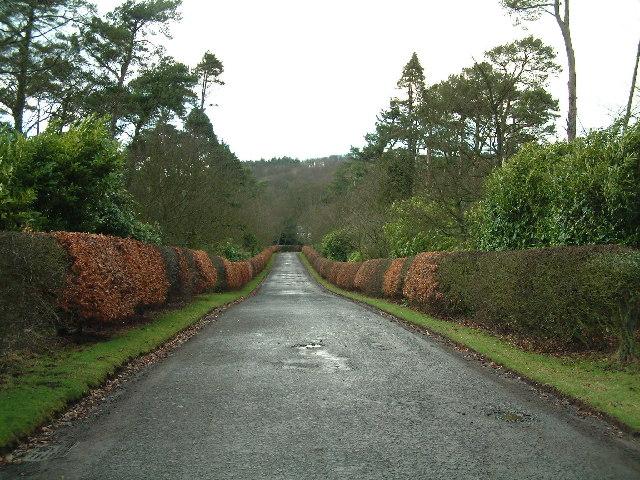 Entrance driveway to Blebo House