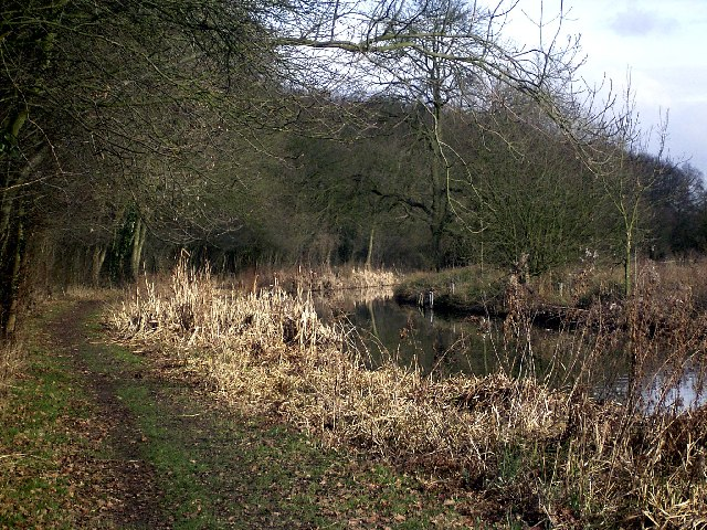 Ashby Canal near Far Coton