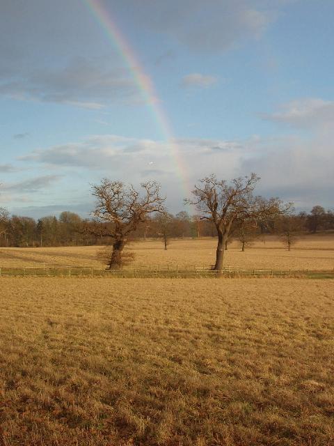 Rainbow, Windsor Great Park