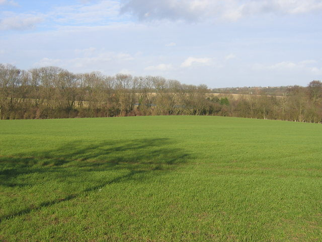 View north from The Ridgeway