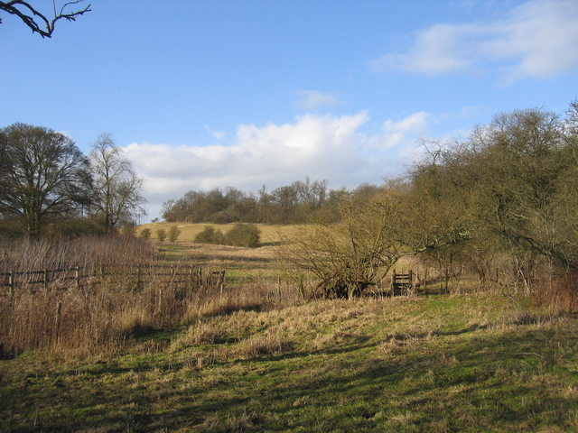 Footpath to Billesley