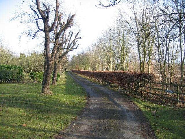 Driveway to Redhill Farm