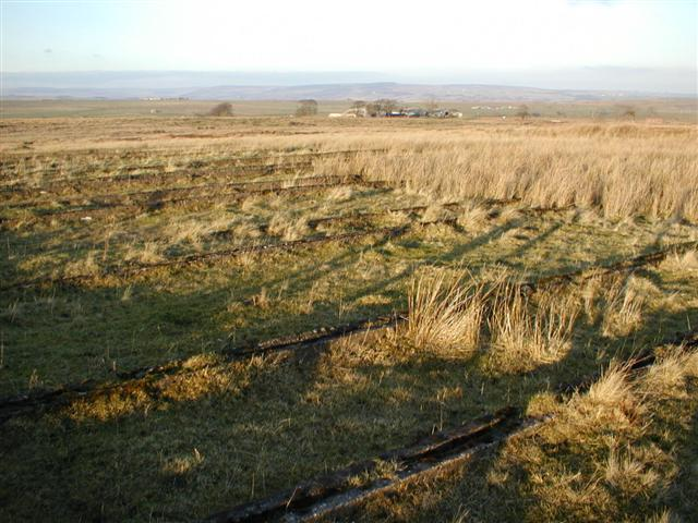 Foundations of Abandoned RAF Camp, Stoney Keld