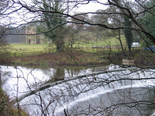 Alnwick Abbey, Alnwick