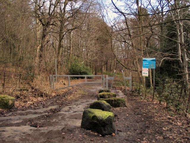 Broomhead Walk