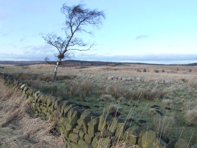 Looking over the moors.