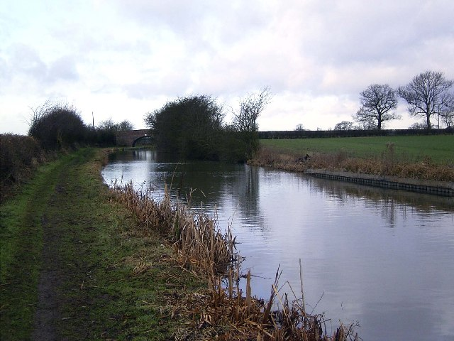 Ashby Canal near Congerstone