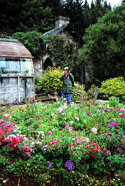 Candacraig garden
