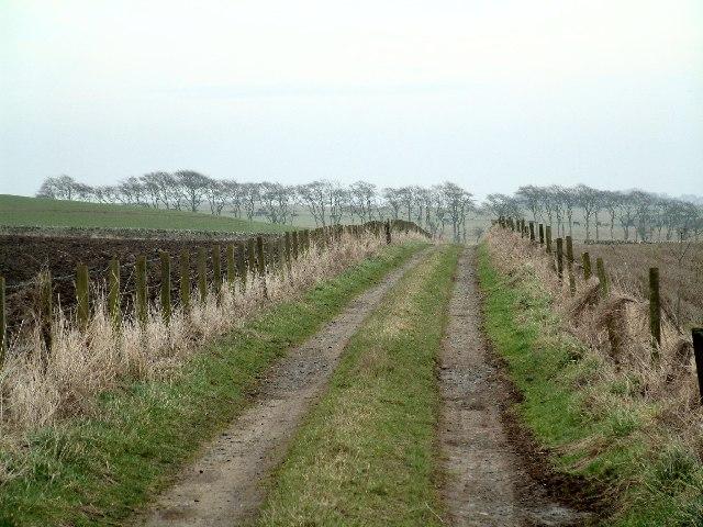 Farm track east of Balkaithly