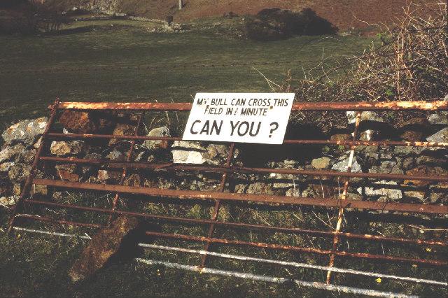 Farm gate in Llanlleiana
