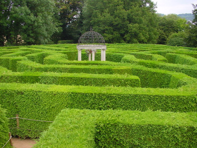 Jubilee Maze at Symonds Yat