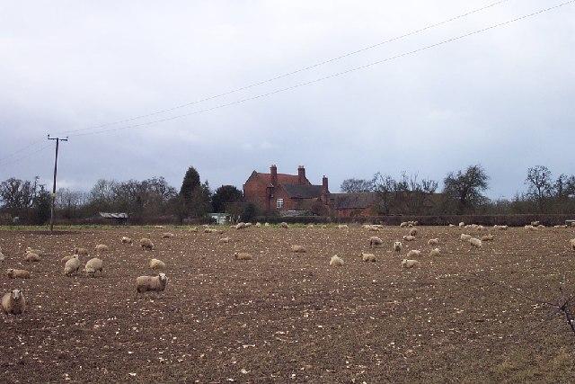 Morfe Farm