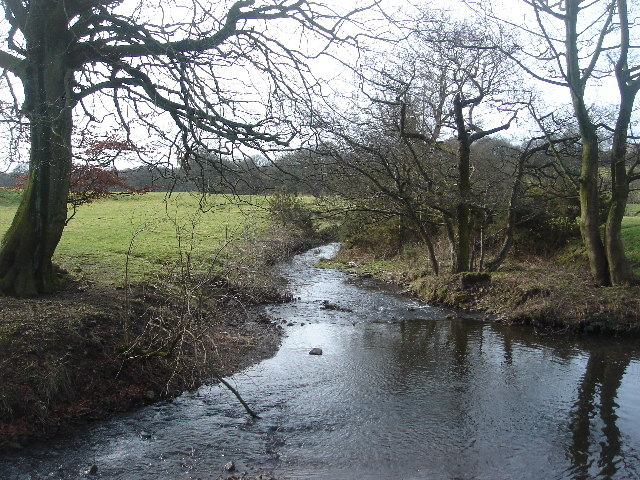 River Yarrow at Limbrick