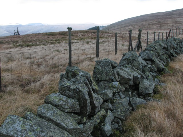 Wall on Bentie Knowe
