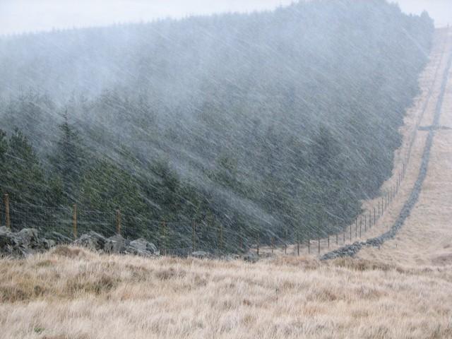Snow shower on Innerdownie