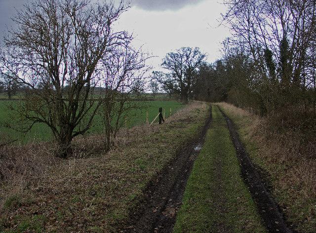 Oxfordshire Way near Pyrton