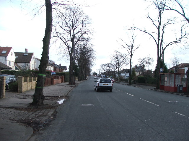 Street Lane, Moor Allerton.