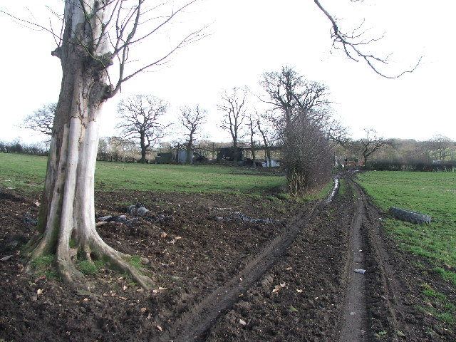 Farmland off Park Lane.