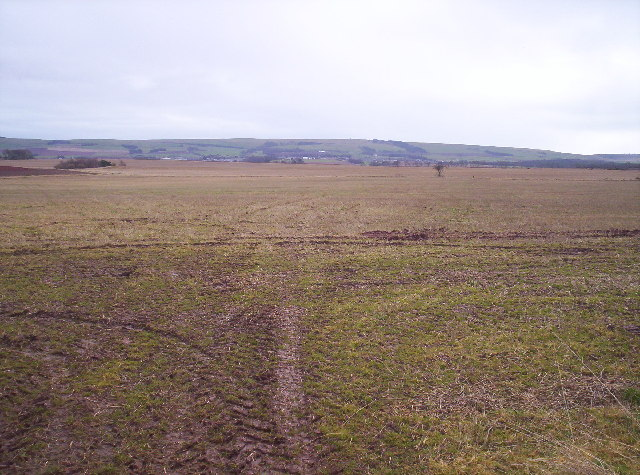 Field with Hill of Garvock in the Background