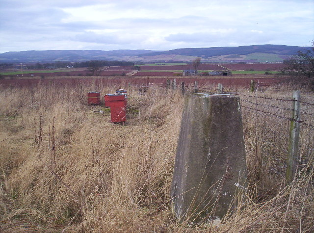 Trig Point and Beehives near A90