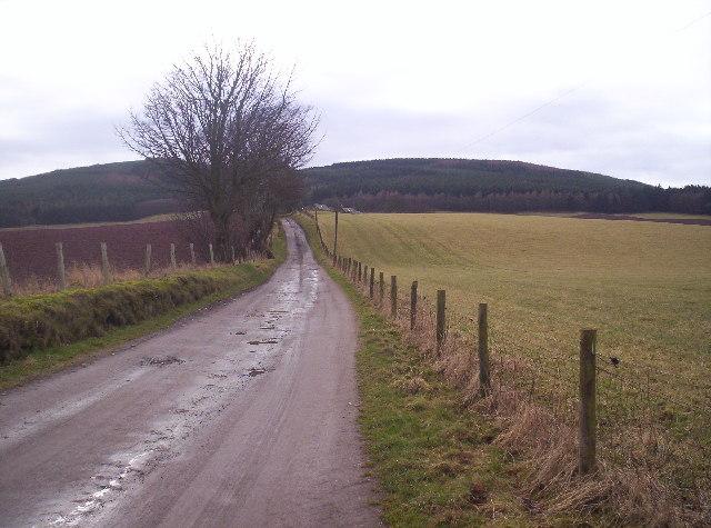 Track to Drumelzie Farm with Drumelzie Woods Behind