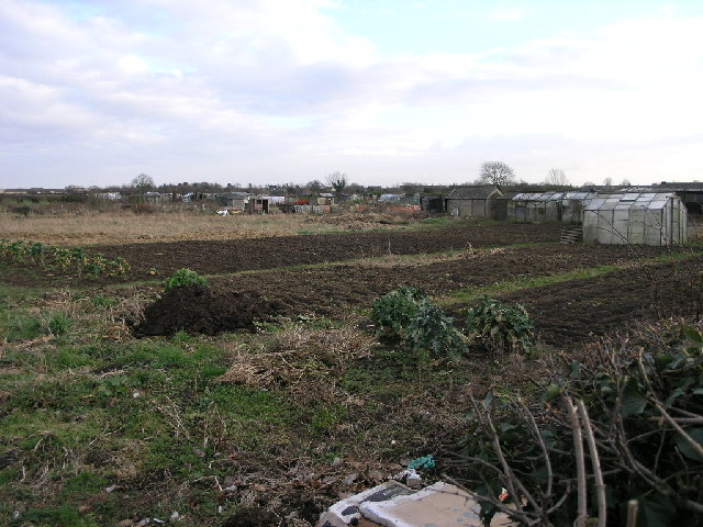 Oxcroft Lane Allotments