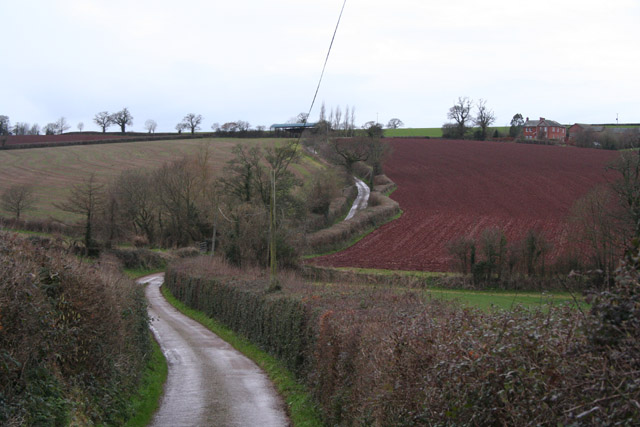 Shobrooke: between Shute and Furze