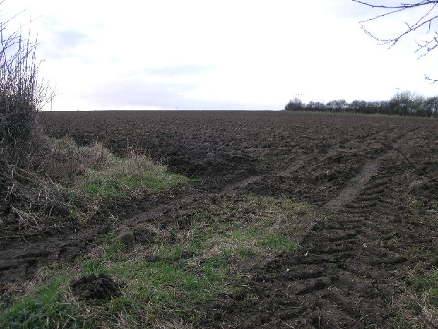 Damsbrook Lane Field