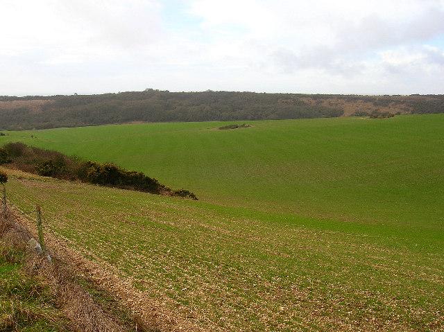 Hobb's Hawth