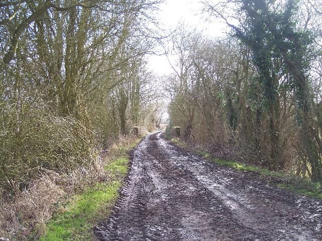 Bed of Disused Railway, Great Wacton