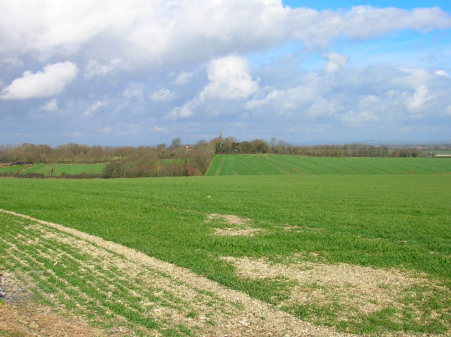 Across the fields to Berwick Church
