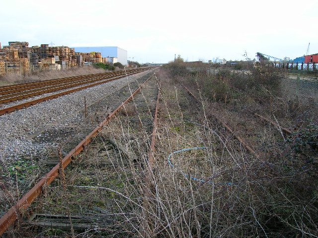 Overgrown sidings, Newhaven