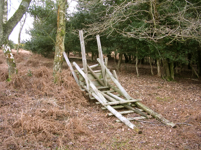 Collapsed deer stalking seat, Ocknell Inclosure, New Forest