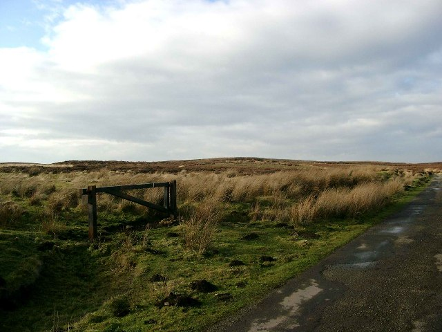 Roxby High Moor