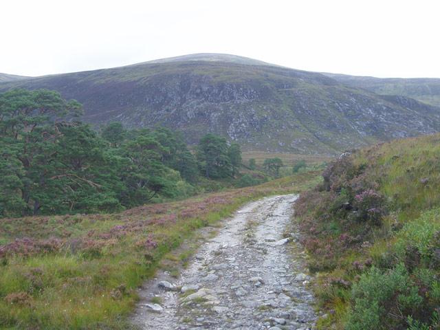 Track along Gleann nam Fiadh