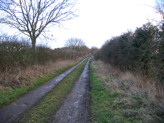 Farm track, Wellingham, Norfolk