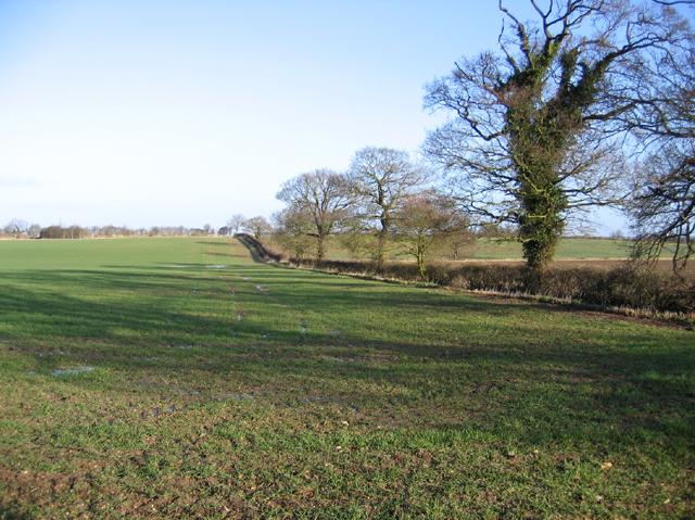 Farmland west of Gt Ryburgh, Norfolk