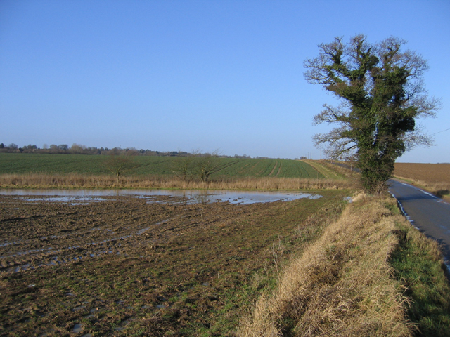 Flooded field headland, Testerton, Norfolk