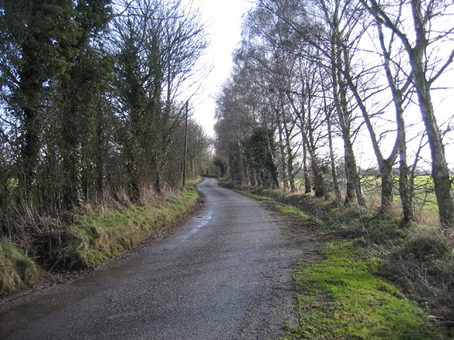 Country lane from Hamrow to Horningtoft, Norfolk