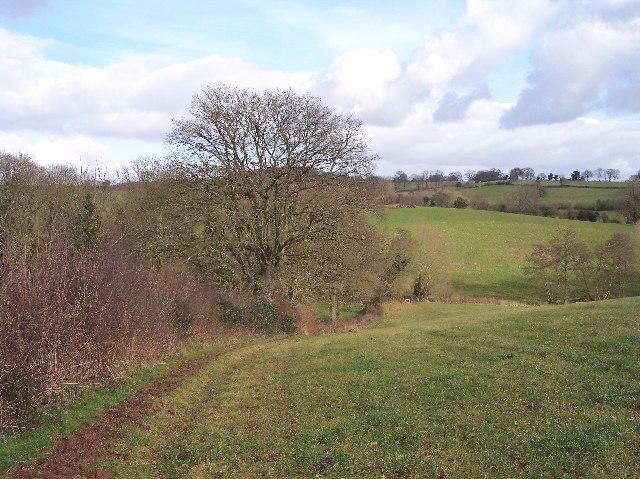 Footpath to Little Cowarne Brook