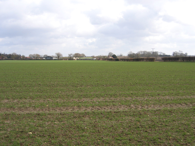 Landscape SE of Colkirk, Norfolk