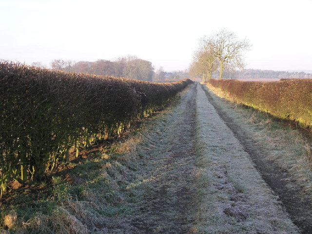 Path to Hodthorpe