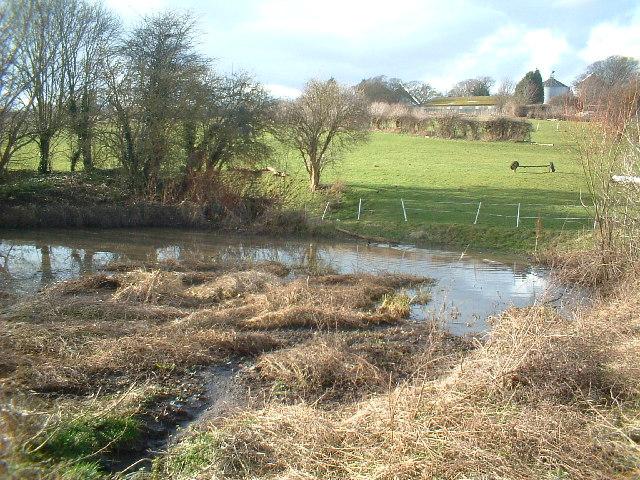 Duck pond, Sutton