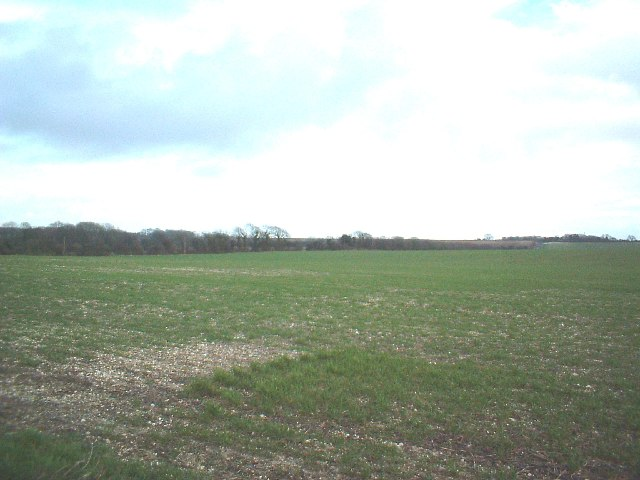 Fields near West Langdon