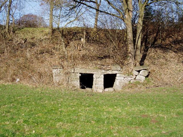 Sheep underpass